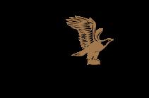 American Trust Logo
