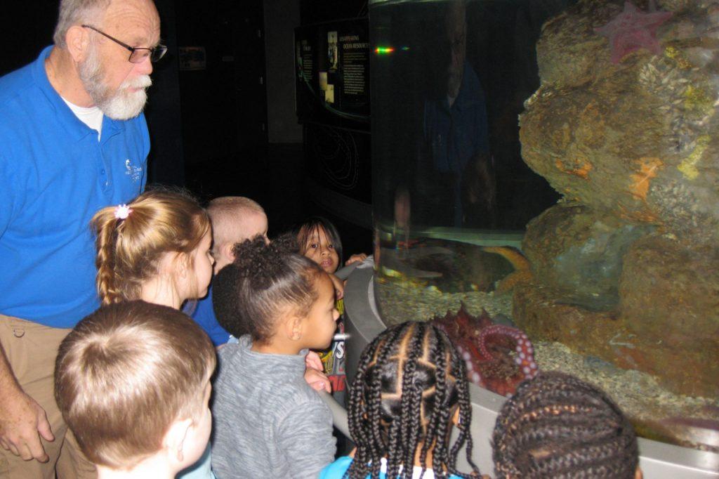 Students looking at fish.