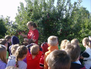 Kindergarten at Apple Orchard