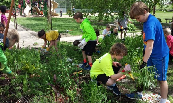 News students work to cleanup the butterfly gardens