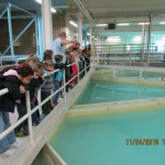 Students look at the area where water begins the cleaning process