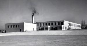 Rear View 1953